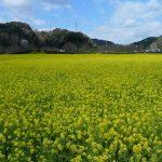 静岡のコワーキングスペース10選!ドロップインや月額利用・登記可など